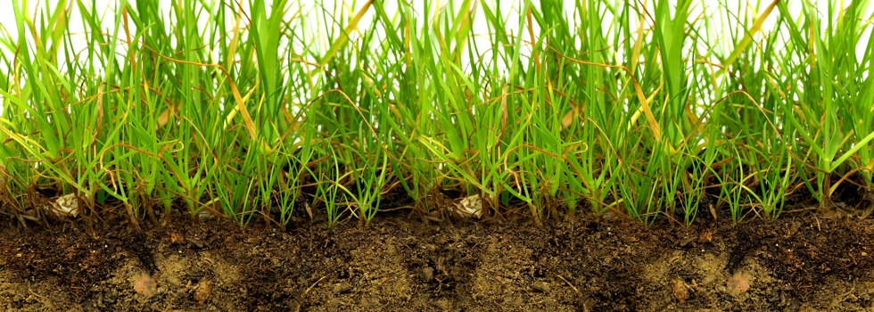 Kwikfynd Sub soil drainage 6